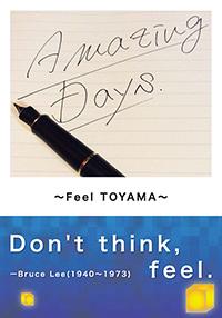 Amazing Days ~Feel TOYAMA~